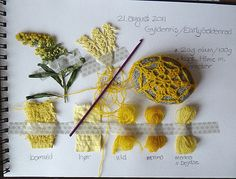 Great idea for a natural dye journal                                                                                                                                                     More