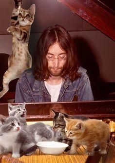 documenting John Lennon's love for cats