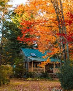 Do you own a cabin? Destinations, Cabin In The Woods, Log Cabin Homes, Log Cabins, Little Cabin, Autumn Scenery, Autumn Aesthetic, Autumn Cozy, Cabins And Cottages