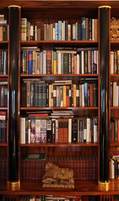 library / beautiful bookcase by Alex Findlater www.alexfindlater.com