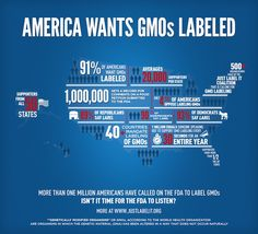 GMO food labeling infographic