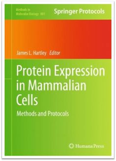 Methods in Molecular Biology Vol.801 - Protein Expression in Mammalian Cells Methods and Protocols | Sách Việt Nam