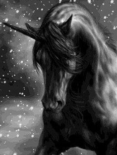 While a black unicorn does not necessarily mean impurity, it symbolizes strength and power and that it can lead someone towards obtaining their goals as a black unicorn can overcome barriers and push forward to a desirable, powerful life. The Last Unicorn, Real Unicorn, Unicorn Horse, Unicorn Art, Magical Unicorn, Unicorn Names, Unicorn And Fairies, Unicorn Fantasy, Unicorns And Mermaids