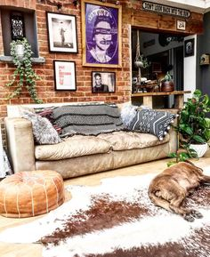 The Conservatory with exposed brick and a comfy sofa, cowhide rug and plants and art, all make for a great place to hang out in.
