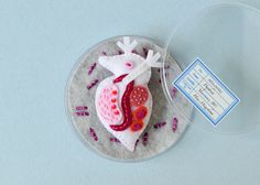Daphnia Brooches on Behance
