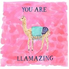 *FLASH SALE!* Get 25% off everything (including this new llama card) with LLAMA25 (ends Friday at 3PM EST / not valid on previous purchases) Funny Llama, Alpacas, Llama Face, Evelyn Henson, Llama Pictures, School Fun, Llama Alpaca, Green Cleaning, Celebrity Hairstyles
