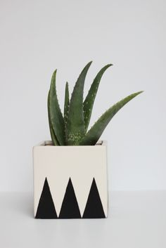 How to Make a Geometric Planter — Hank and Hunt Party Crafts