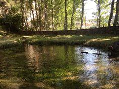 Nacimiento río aguisejo