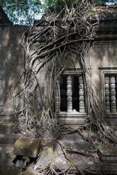 Ruins of Beng Mealea, Angkor, Cambodia Stock Photo