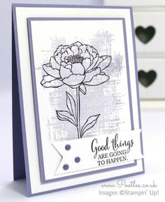 Stampin' Up! Pootles - You've Got This in Elegant Eggplant and Wisteria Wonder: