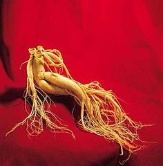 Most ginseng benefits are thought to be the result of two important groups of compounds: ginsenosides and polysaccharides. The ginsenosides are the most-studied ginseng constituents and have been found to have regulatory effects on the central nervous system, cardiovascular system, immune system, reproductive system, and more.