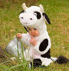 cow costume @evolve modern hairdressing modern hairdressing Designs Armstrong Johnson