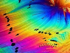 Beautiful Science #1 Un voyage initiatique en 50 images scientifiques extraordinaires. ~ Sweet Random Science