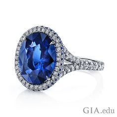 Omi Prive: Sapphire and Diamond Ring Style: Sapphire Jewelry, Sapphire Diamond, Gemstone Jewelry, Blue Sapphire, Diamond Life, Sapphire Rings, Blue Topaz, Diamond Rings, The Violet