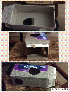 Kleenex box pet toy! I used this for my gerbil she loves it!