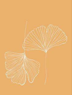 Illustration Blume, Simple Illustration, Floral Illustrations, Illustrations Posters, Line Art Flowers, Colorful Wall Art, Jolie Photo, Art Graphique, Simple Art