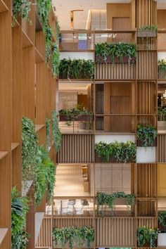 A wooden trellis structure was installed around the three floors of galleries that surround the atrium. This acts a support structure for large planting boxes, which are filled with tropical greenery. Green Architecture, Sustainable Architecture, Architecture Photo, Sustainable Design, Luz Natural, Wooden Trellis, Green Facade, Wooden Buildings, Residential Complex