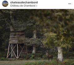 Chambord, ce château où la nature est reine. || 🇬🇧 Chambord, this castle where nature is queen. © JM Turpin