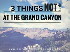 Three Things NOT to Do at the Grand Canyon - Suitcases and Sippy Cups
