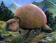 Glyptodon - Giant armadillos, the size of a VW Beetle (2.5 million to 10,000 years ago)