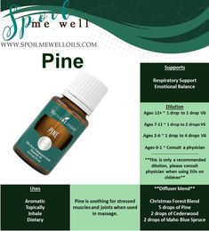 Pine Essential Oil, Young Living, Dilution ratios, emotional support, living and supporting families naturally