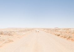 A Personal Journey Through The Navajo Nation by Evan James Atwood