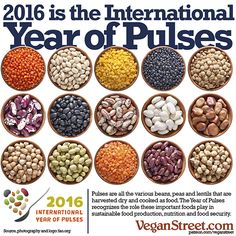 2016 is the International Year of Pulses #govegan