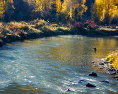 Fly Fishing in Idaho -- YES PLEASE!