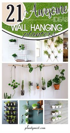 Hanging planter for wall