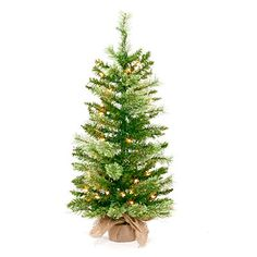 3'+Pre-Lit+Artificial+Christmas+Tree,+Cashmere+with+Clear+Lights+at+Big+Lots.