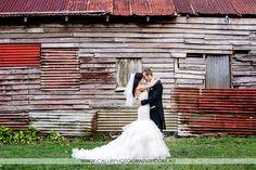 Real Wedding - Charlotte & James by Calli B Photography Real Weddings, Wedding Photos, Charlotte, Wedding Photography, Bride, Wedding Dresses, Photo Ideas, Amp, Fashion