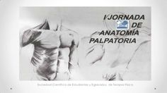Anatomía palpatoria  clase 2 - columna vertebral