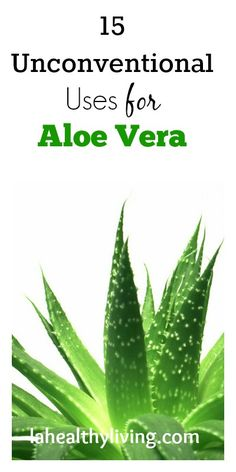 15 Unconventional Uses For Aloe Vera
