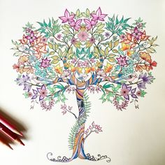 Johanna Basford | Picture by Debby | Colouring Gallery