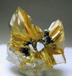 Quartz crystals with golden Rutile needles on and inside them and Plates of Hematite in the center from Novo Horizonte, Brazil