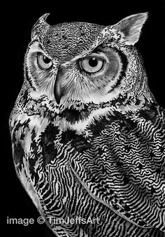 Hey, I found this really awesome Etsy listing at https://www.etsy.com/listing/166255292/great-horned-owl-ink-drawing