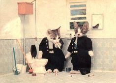 25 Vintage Cats And Dogs Dressed As People