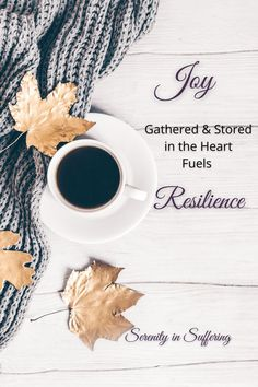 How much do you gather each day? God desires our joy to be full, so that when life's storms come we trust him. #serenityinsuffering #serenity #joy #joyinspiration #joyful #joyfulness #rejoice