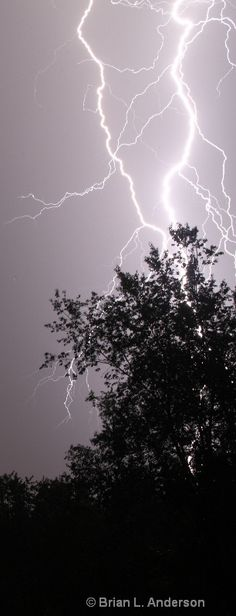 Feel the Power Pictures Of Lightning, Storm Pictures, Cool Pictures, Lightning Flash, Thunder And Lightning, Lightning Strikes, Lightning Photography, Nature Photography, Brian Anderson