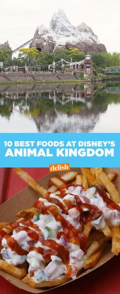 The 15 Most Delish Foods At Disney's Animal Kingdom – Turkey Disney Animal Kingdom, Animal Kingdom Rides, Animal Kingdom Dining, Animal Kingdom Fast Passes, Disney World Tips And Tricks, Disney Tips, Disney Food, Disney Stuff, Food At Disney World