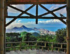 Rio de Janeiro, Tijuca Forest, Brazil
