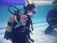 Indigo Scuba News: Scuba diving in Cape Town