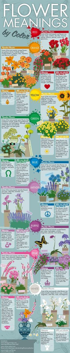 Interesting info on the meanings of flower colors.