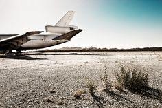 DC10#2, from the Desert Birds series by Werner Bartsch.