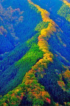 Tenskawa Mountain #Japan
