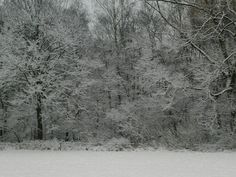 February snow in Hengelo