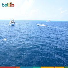#Tbt #discoverBelize #travel #random #picoftheday #doubletap #follow.