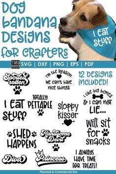 Custom Dog Shirts, Bandana Design, Meant To Be Quotes, Dog Quotes Funny, Dog Bandana, Printed Materials, Shirts With Sayings, Dog Design, Design Bundles
