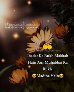 Urdu Quotes, Islamic Quotes, Allah Love, Ramadan, Thoughts, My Love, Muslim, English, Culture