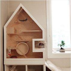 DIY Modern Chinchilla Cage.